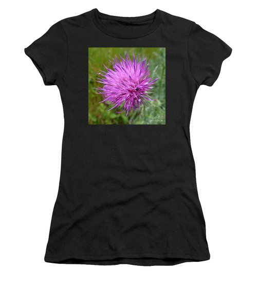 Purple Dandelions 2 Women's T-Shirt