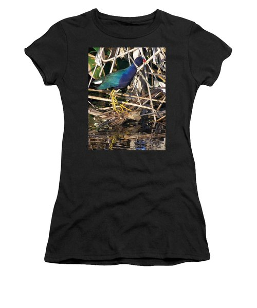 Women's T-Shirt (Junior Cut) featuring the photograph Purple Galinule  by Chris Mercer