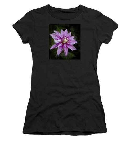 Purple Pink Dahlia Women's T-Shirt