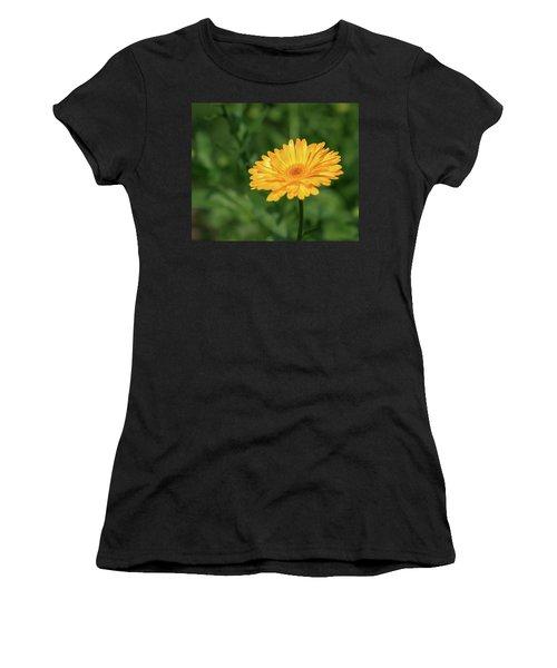 Radiant Summer Flower Soaking It Up Women's T-Shirt
