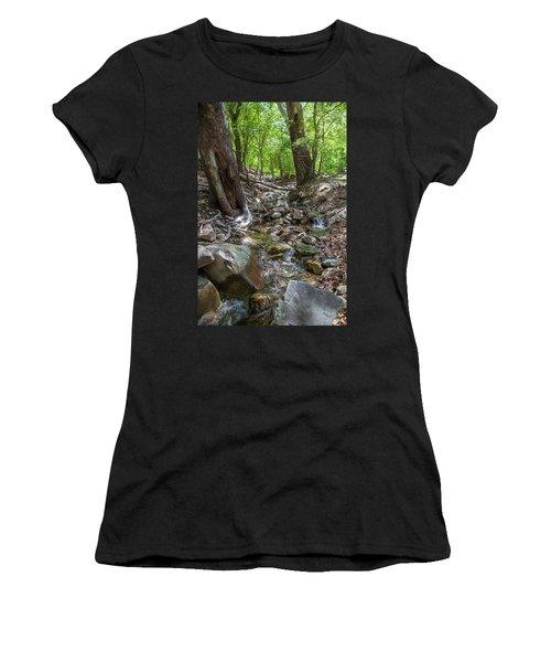 Ramsey Canyon Preserve Women's T-Shirt
