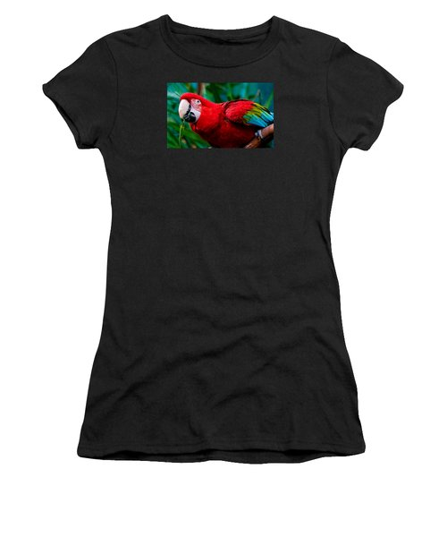 Red And Green Macaw Women's T-Shirt