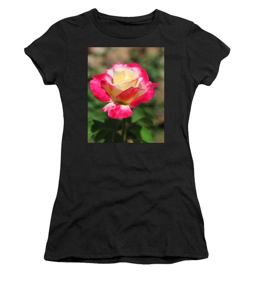 Red And Yellow Rose Women's T-Shirt