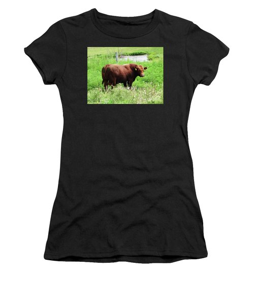Red Angus Bull Women's T-Shirt (Athletic Fit)