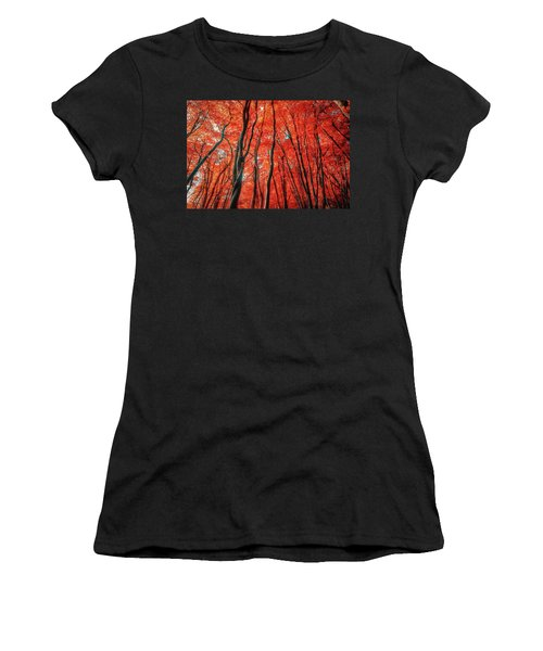 Red Forest Of Sunlight Women's T-Shirt