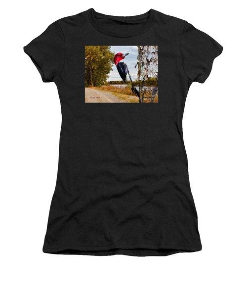 Red Headed Woodpecker In Wilderness Women's T-Shirt (Junior Cut) by Annie Zeno