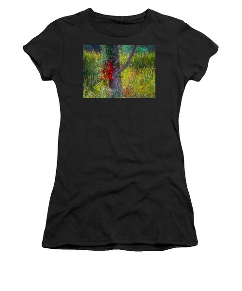 Red Leaves And Vines On Tree In Forest Of Reeds Women's T-Shirt