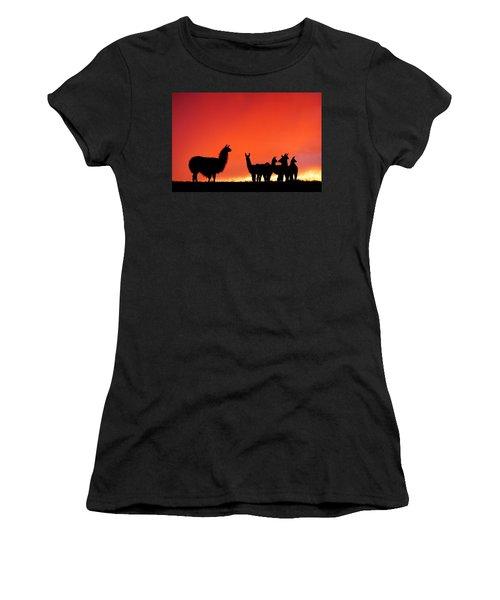 Red Llama Sunset 2 Women's T-Shirt