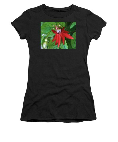 Women's T-Shirt (Junior Cut) featuring the photograph Red Passion by Marna Edwards Flavell