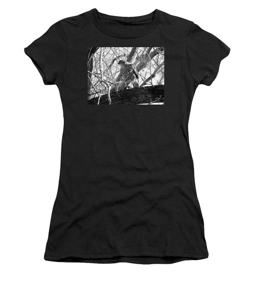 Red Tail Hawk In Black And White Women's T-Shirt