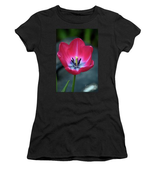 Red Tulip Blossom With Stamen And Petals And Pistil Women's T-Shirt