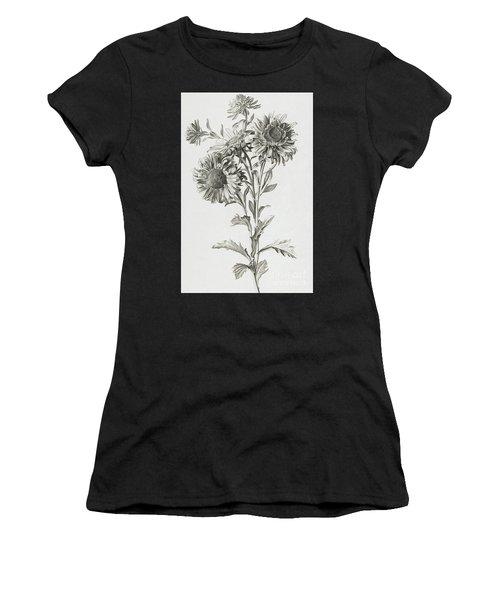 Reine-marguerite Women's T-Shirt