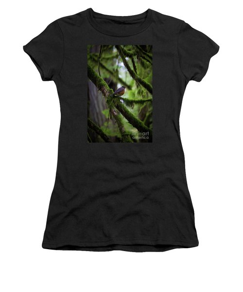 Robin Vignette Women's T-Shirt (Athletic Fit)