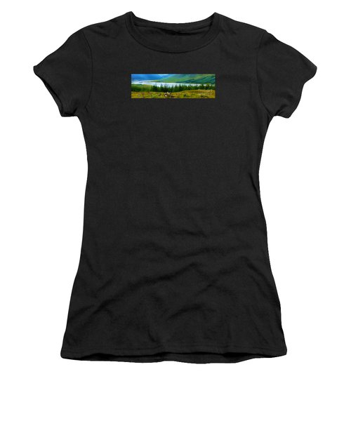 Rock Cairns In Scotland Women's T-Shirt (Athletic Fit)