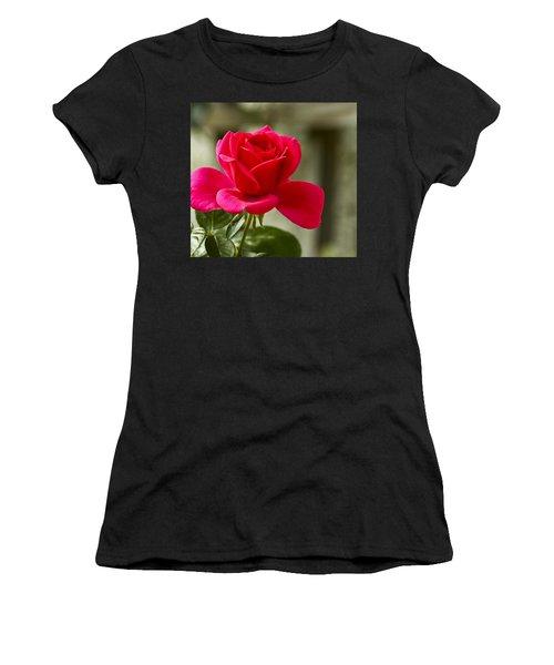 Red Rose Wall Art Print Women's T-Shirt (Junior Cut) by Carol F Austin