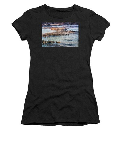 Sandhill Crane Platte River - Textured Women's T-Shirt