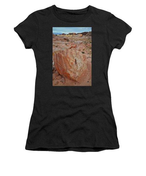 Sandstone Shield In Valley Of Fire Women's T-Shirt