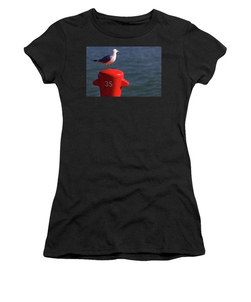 Seagull Number 35 Women's T-Shirt