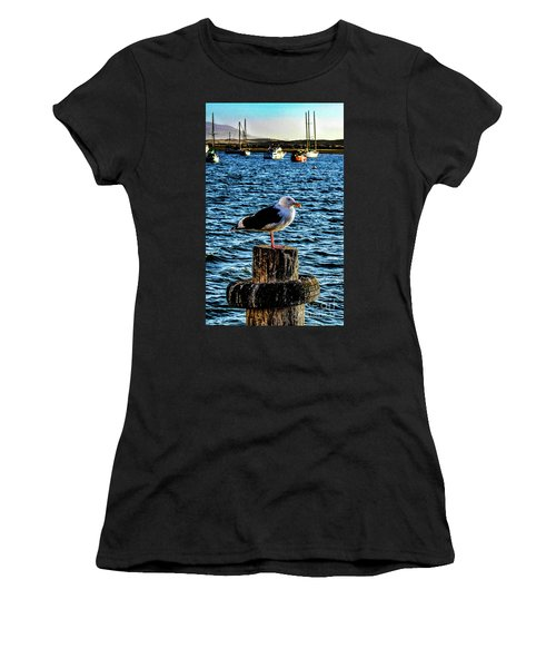 Seagull Perch Women's T-Shirt