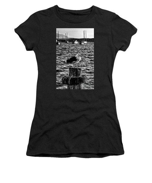 Seagull Perch, Black And White Women's T-Shirt