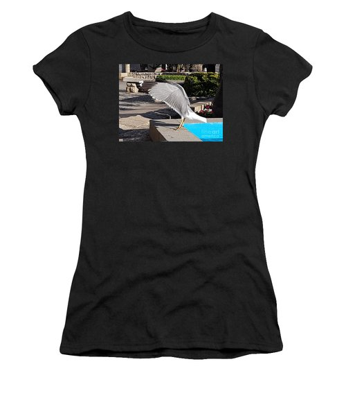 Seagull Showing Off Women's T-Shirt (Athletic Fit)