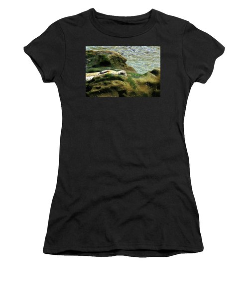 Women's T-Shirt (Junior Cut) featuring the photograph Seal On The Rocks by Anthony Jones