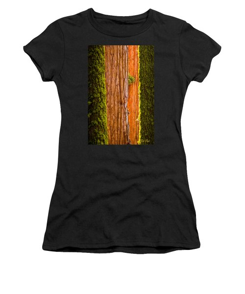 Sequoia Abstract Women's T-Shirt