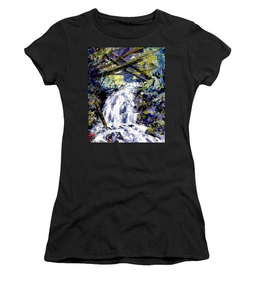 Shepherds Dell Falls Coumbia Gorge Or Women's T-Shirt