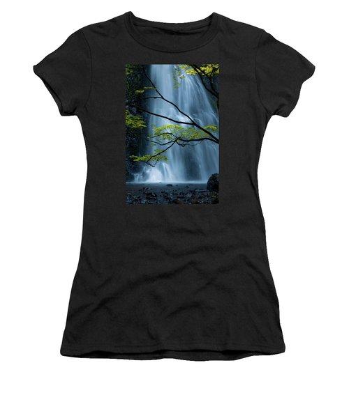 Silver Fall Women's T-Shirt