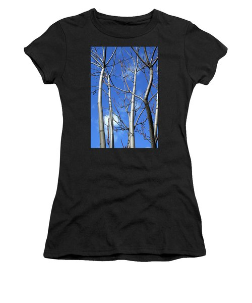 Silver Smooth Women's T-Shirt