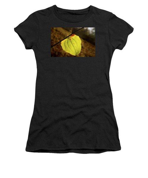 Single Greenbrair Leaf In Evening Sun Women's T-Shirt (Athletic Fit)