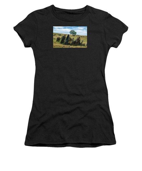 Slate Filled Meadow Women's T-Shirt