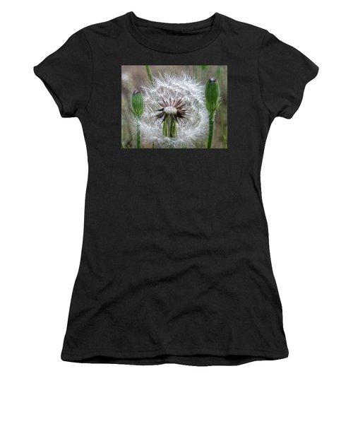 Slight Breeze Women's T-Shirt (Athletic Fit)