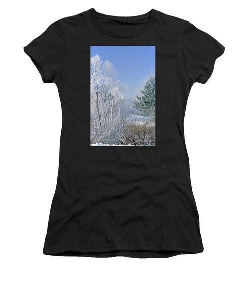 2a357 Snow Covered Trees At Alum Creek State Park Women's T-Shirt