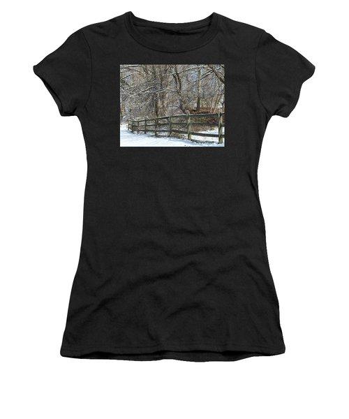 Winter Fence Women's T-Shirt