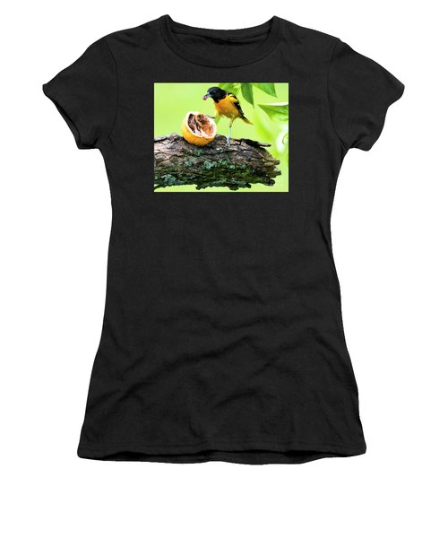 Soaking Wet Baltimore Oriole At The Feeder Women's T-Shirt