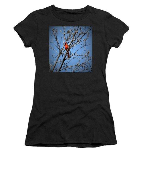 Songbird Women's T-Shirt