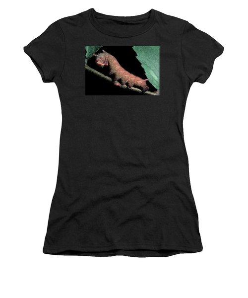 Sphinx Moth Caterpillar Women's T-Shirt