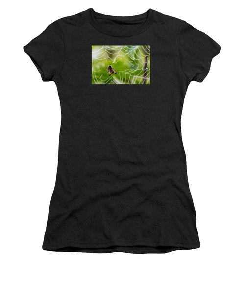 Spider And Spider Web With Dew Drops 05 Women's T-Shirt