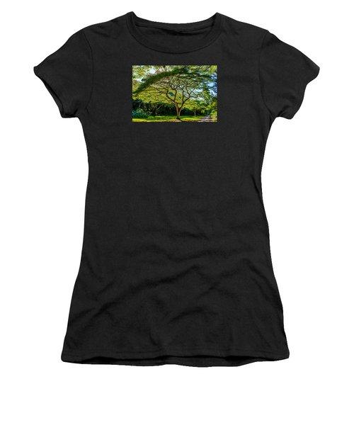 Spider Tree Women's T-Shirt