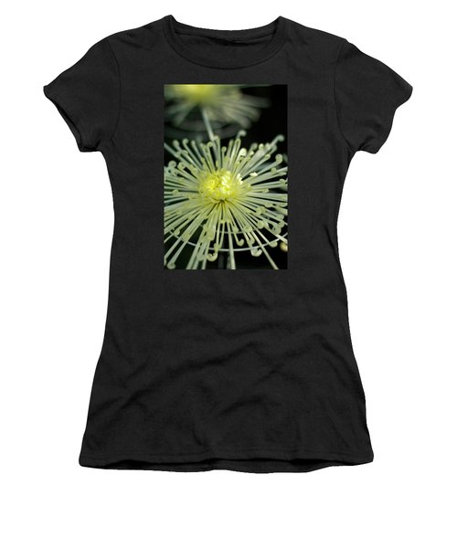 Spiral Chryanth Women's T-Shirt