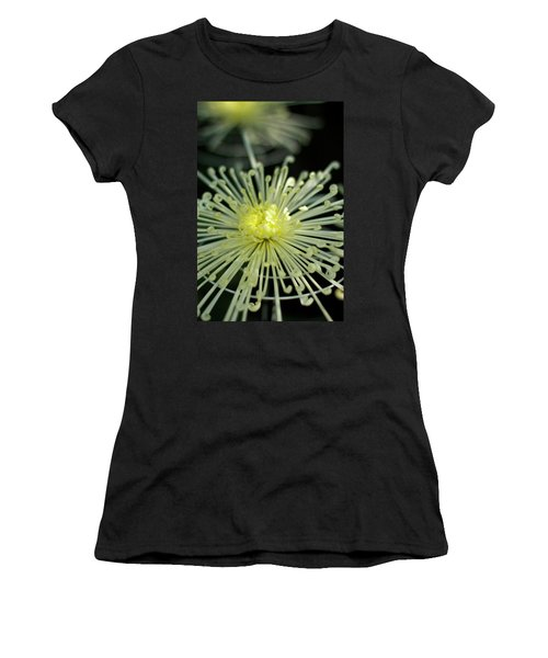 Spiral Chryanth Women's T-Shirt (Athletic Fit)