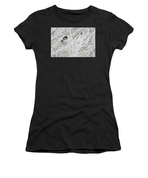 Spotted Towhee In Winter Women's T-Shirt