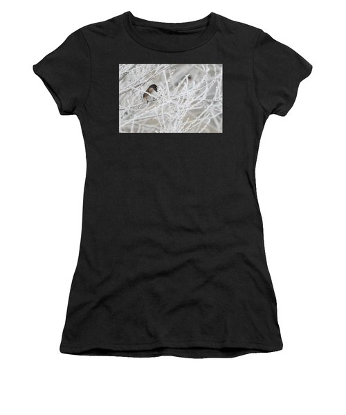 Spotted Towhee In Winter Women's T-Shirt
