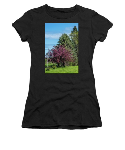 Women's T-Shirt (Junior Cut) featuring the photograph Spring Blossoms by Paul Freidlund