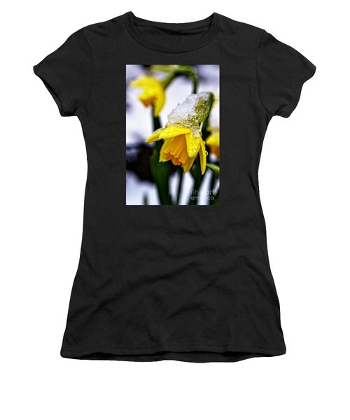 Spring Daffodil Flowers In Snow Women's T-Shirt