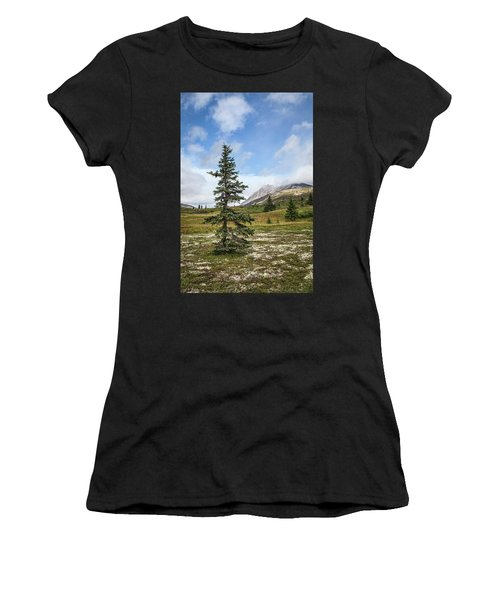 Spruce Tree In Summer Women's T-Shirt (Athletic Fit)