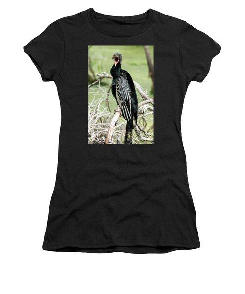 Squawking Anhinga Women's T-Shirt