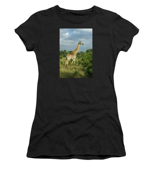 Standing Alone - Giraffe Women's T-Shirt (Athletic Fit)