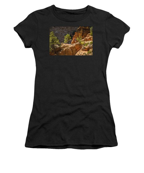 Steeply Up The Canyon Women's T-Shirt (Athletic Fit)